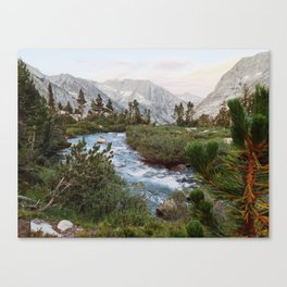 Alpine River and Mountains Canvas Print