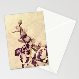 Orchids 2 Stationery Cards