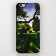 A Walk in the Garden iPhone & iPod Skin