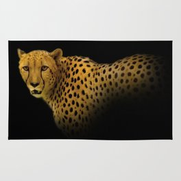 Cheetah Disappearing into Black Velvet Rug