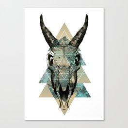 Skull #1  Canvas Print