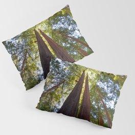 California Redwoods Pillow Sham