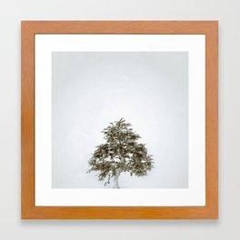 Tree #03 Framed Art Print