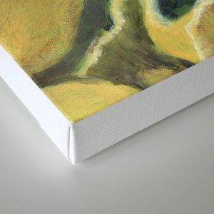Classic study Canvas Print