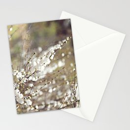 Fresh Popcorn Stationery Cards