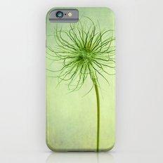 pulsatilla seed head iPhone 6s Slim Case