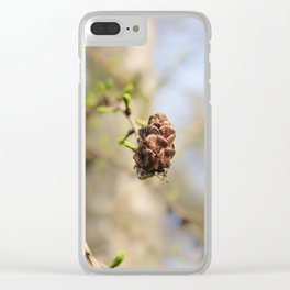 An old cone of fir. Clear iPhone Case
