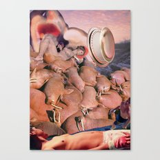Walrus Trouble II Canvas Print