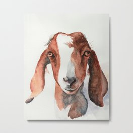 Boer Goat Watercolor Metal Print