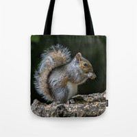 squirrel Tote Bags featuring Squirrel by Fine Art by Rina