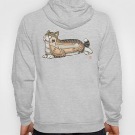 The truth about cats Hoody