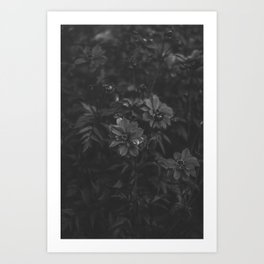Floral (Black and White) Art Print