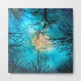 Evening, looking up at bare trees, the moon and starry sky Metal Print