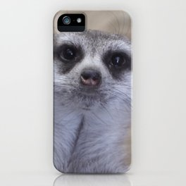 Meercat iPhone Case