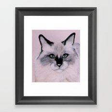 Birman Cat painting Framed Art Print