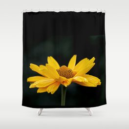 Bright Yellow And Black Shower Curtain