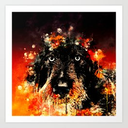 wire haired dachshund dog ws Art Print