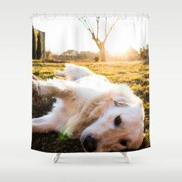 Dog by Tamás Tokos Shower Curtain
