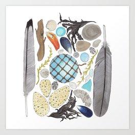Coastal Treasures Art Print