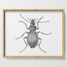 Beetle 15 Serving Tray