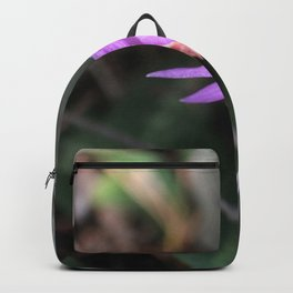 Up the Trail-head Backpack