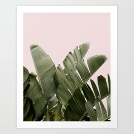 PALM ON PINK Art Print