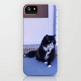 Cat house iPhone Case
