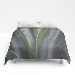 Agave Macro Comforters
