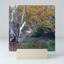 Fall Foliage Along the East Fork Mini Art Print