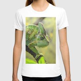 Veiled Chameleon T-shirt