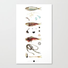 The Boardwalk  Canvas Print