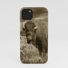 American Buffalo in Sepia Tone iPhone Case