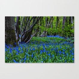 BLUE GLADE Canvas Print