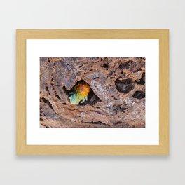 Scaley Lumpcrawler Framed Art Print