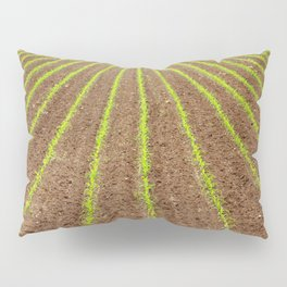 Corn field Pillow Sham
