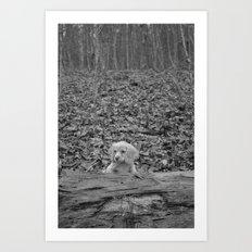 Nature Talks Back Art Print