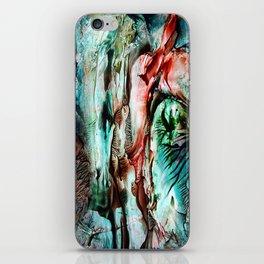Tornado iPhone Skin