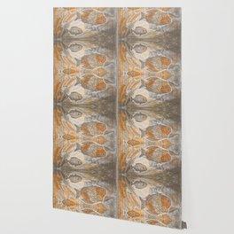 Fishes  /  Mirror underwater Wallpaper