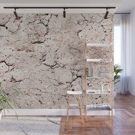 Old Stone Wall - textured II Wall Mural