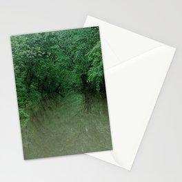 Missouri floods Stationery Cards