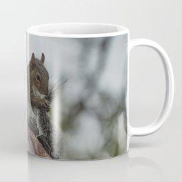 Squirrel Tail Coffee Mug
