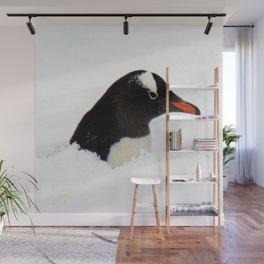 Gentoo Penguin Head Wall Mural