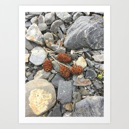 River Stone Tiny Cones Art Print