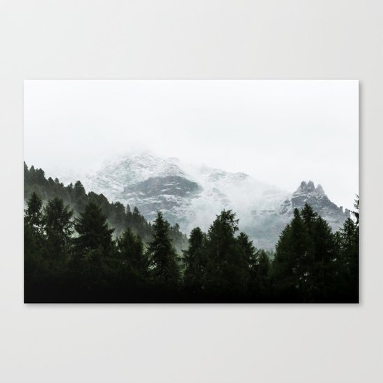 The Way Through The Woods Canvas Print