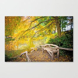 Autumn Bench Meadow Canvas Print
