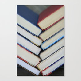 spinal Canvas Print
