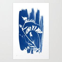 Herbal Sunprint #3 Art Print