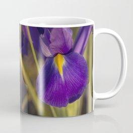 Copigmentation Coffee Mug