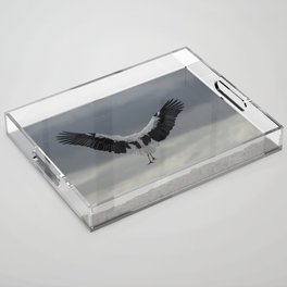 Spread your wings and land Acrylic Tray