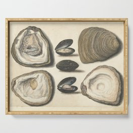 Vintage Oyster and Mussel Illustration, 16th Century Serving Tray